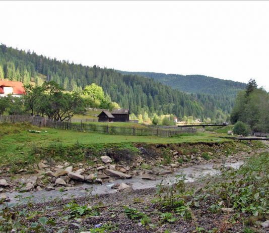 Valea-Brodinei