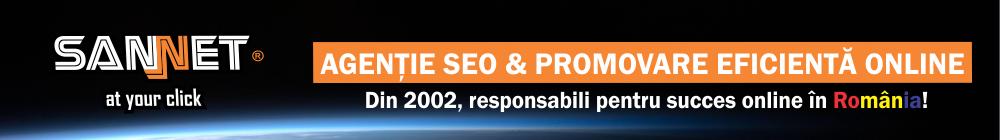 agentie SEO & promovare eficienta online